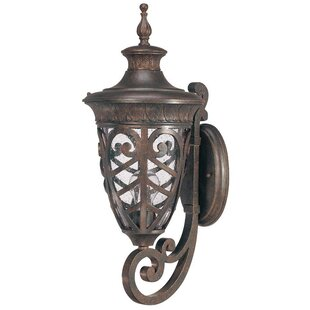 Top Dunamoy Traditional 1-Light Outdoor Sconce By Astoria Grand