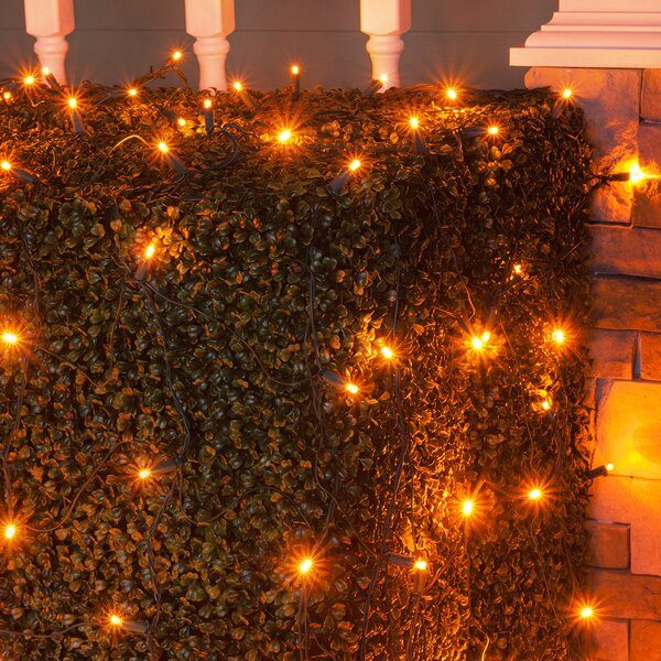100 LED Christmas Net Light by Wintergreen Lighting