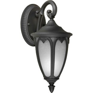 Donna 1-Light Outdoor Wall Lantern By Charlton Home Outdoor Lighting