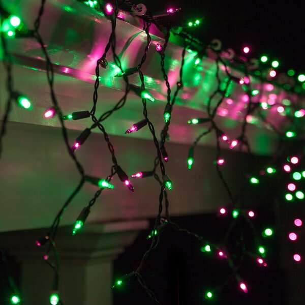 150 Purple/Green Mini Icicle Light String by Kringle Traditions
