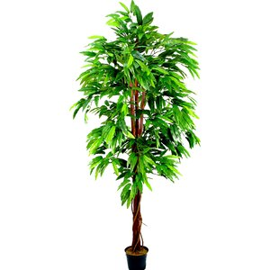 Aritificial Mango Tree Plant in Plastic Pot