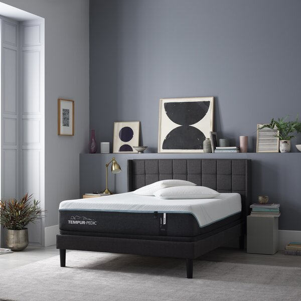 ProAdapt 12 Medium Memory Foam Mattress by Tempur-Pedic
