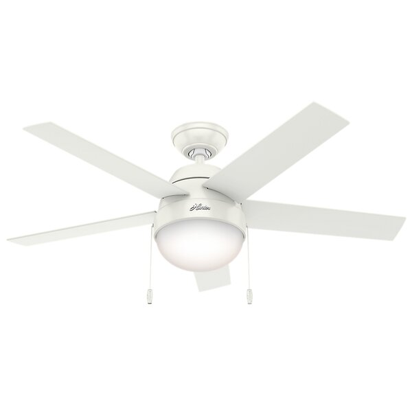 46 Anslee 5-Blade Ceiling Fan by Hunter Fan