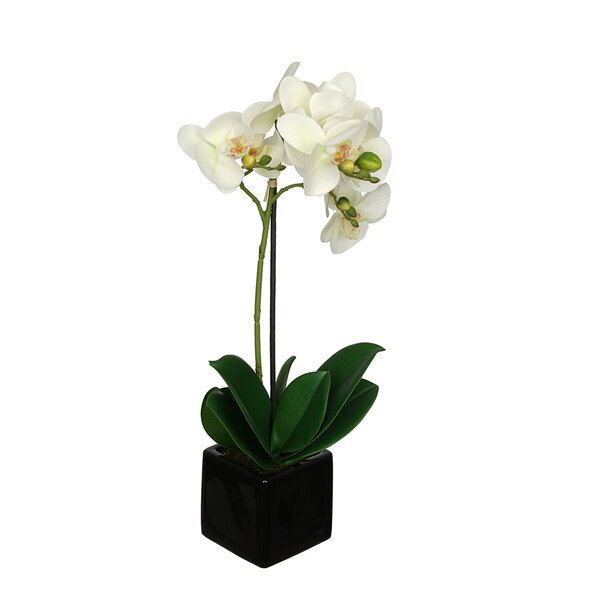 Artificial Baby Orchid Flowers in Pot by House of