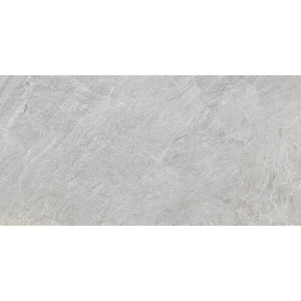 Milestone 24 x 47 Porcelain Field Tile in Moon by Emser Tile