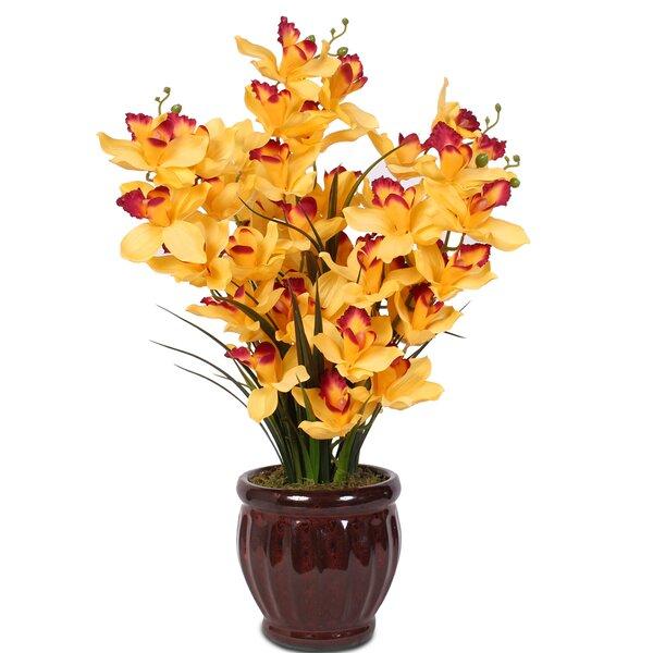 Soaring Cymbidium Orchids in Centerpiece Pot by Fleur De Lis Living