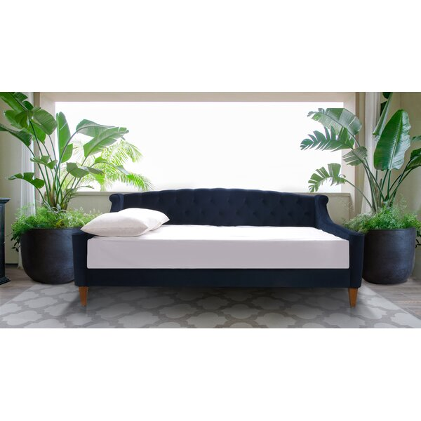 Maeve Twin Daybed by Rosdorf Park