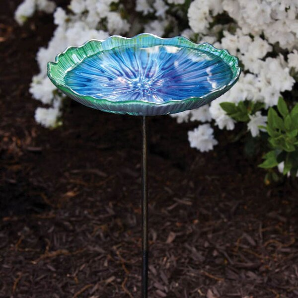 Scalloped Scalloped Birdbath by Evergreen Flag & Garden