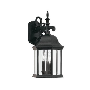 Castellanos 3-Light Outdoor Wall Lantern By Alcott Hill