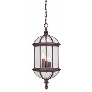 Grenville 3-Light Outdoor Hanging Lantern By Darby Home Co Outdoor Lighting