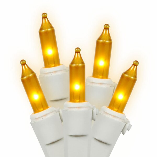 Dura-Lit EC Lock 100 Light Set by Vickerman