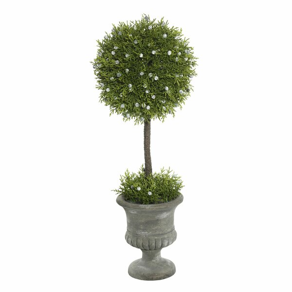 Floor Flowering Topiary in Urn by Ophelia & Co.