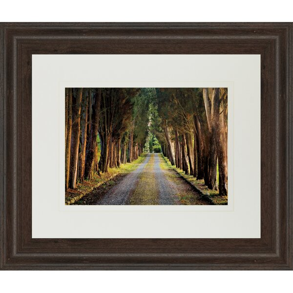 Tree Tunnel by Michael Tunnel and Mossy Oak Nativ Living Framed Photographic Print by Classy Art Wholesalers