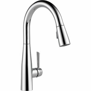 Essa Pull Down Single Handle Kitchen Faucet