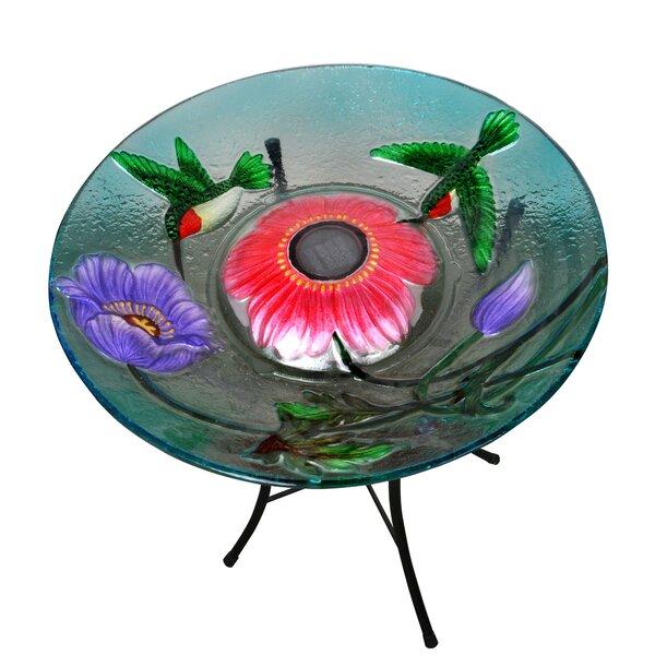 Outdoor Garden Hummingbird Solar Birdbath by Peakt