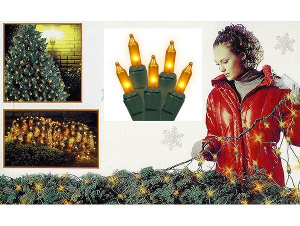 Twinkle Net Christmas Light by Vickerman