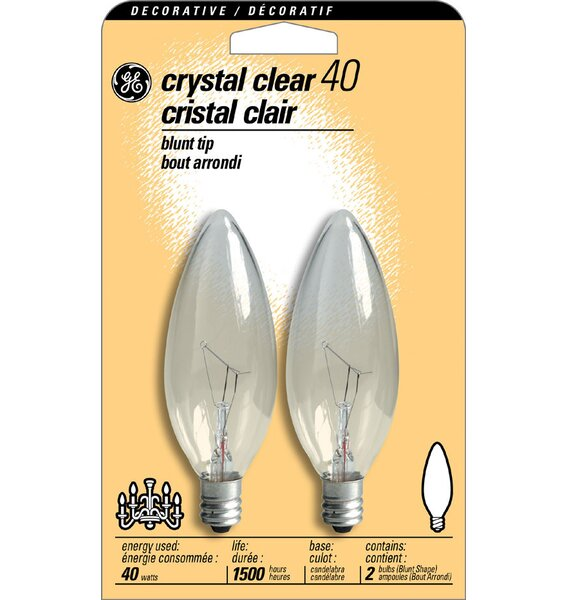 40W 120-Volt (2500K) Light Bulb (Pack of 2) by GE