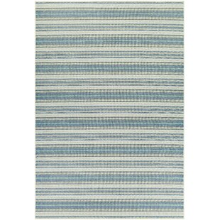 Beachcrest Home Area Rugs | Birch Lane