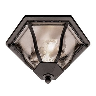 Savings Outdoor 2-Light Flush Mount By TransGlobe Lighting