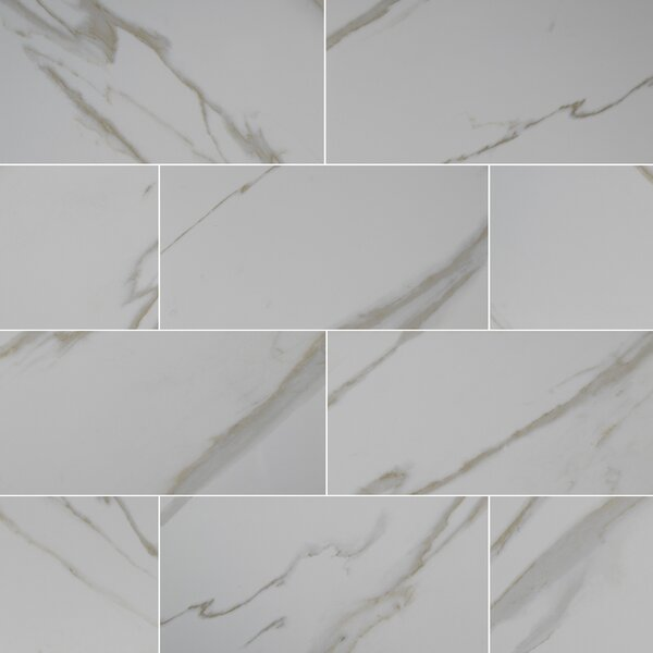 Pietra Calacatta 12 x 24 Porcelain Field Tile in White by MSI