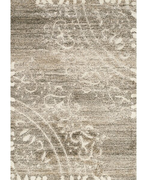 Besser Taupe/Cream Area Rug by Red Barrel Studio