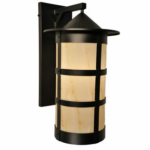 Price Check Pasadena 1-Light Outdoor Wall Lantern By Steel Partners