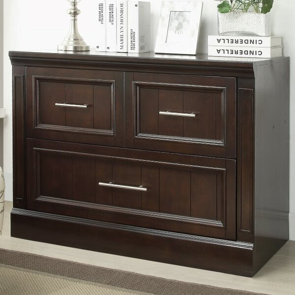 Bissette Library 2-Drawer Lateral File by Astoria Grand
