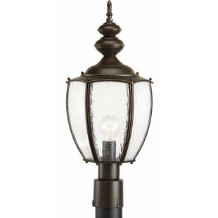 Price comparison Triplehorn 1-Light Incandescent Antique Lantern Head By Alcott Hill
