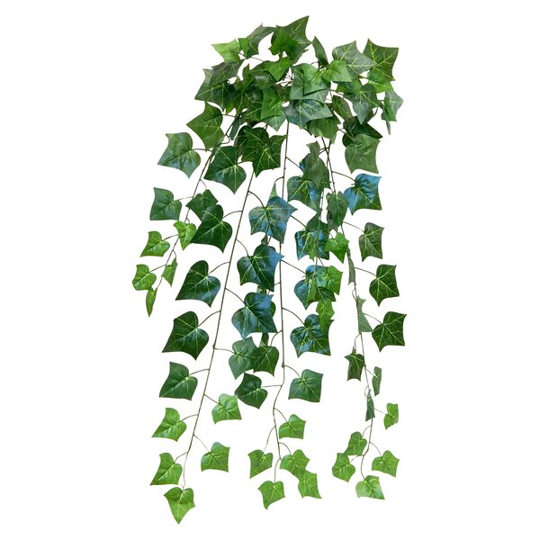 English Ivy Hanging Swag by Winston Porter