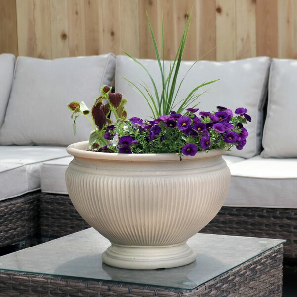 Muhammad Flower Resin Pot Planter by Charlton Home