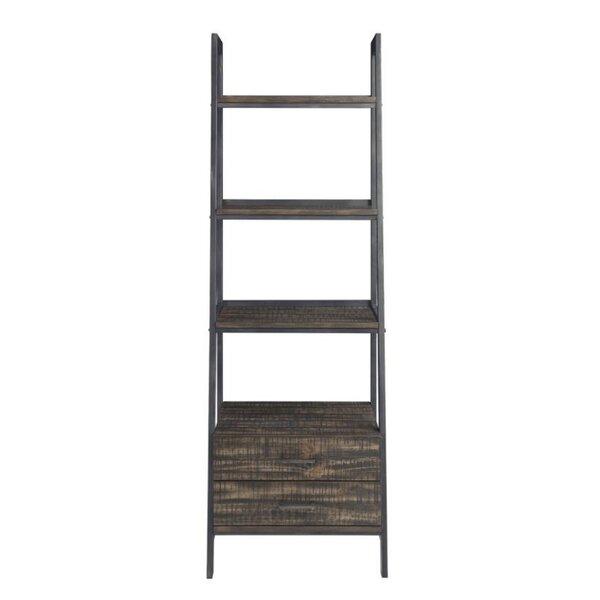Sydney Ladder Bookcase By 17 Stories