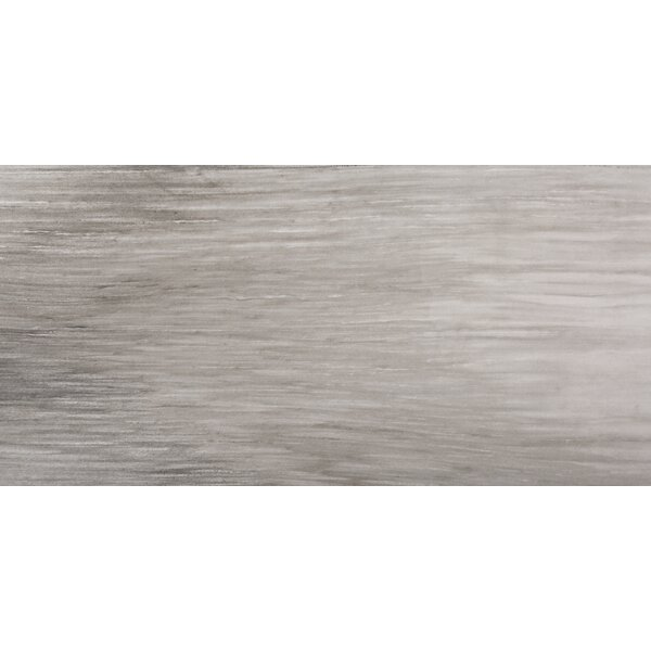 Latitude 12 x 24 Porcelain Field Tile in Taupe by Emser Tile