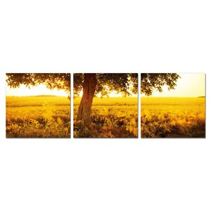 Africa Sunrise 3 Piece Photographic Print Wrapped Canvas Set by Furinno