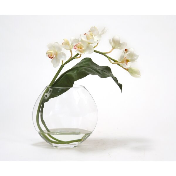 White Cymbidium Orchid with Tropical Leaf in Disk Vase by Distinctive Designs