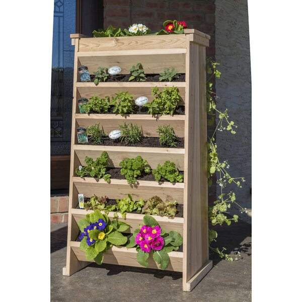 Cedar Vertical Garden by YardCraft