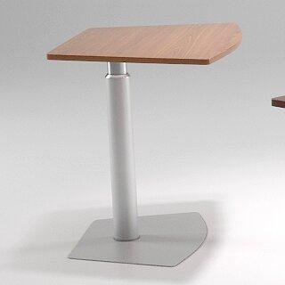 38 L x 24 W Adjustable Table by Palmieri