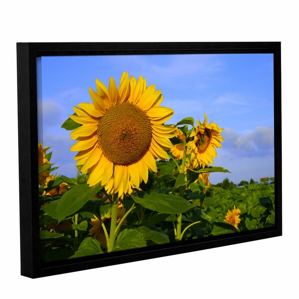 Sunflower by Lindsey Janich Framed Photographic Print on Wrapped Canvas by ArtWall