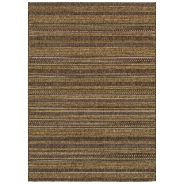 Salter Dark Brown Indoor/Outdoor Use Area Rug by Bay Isle Home