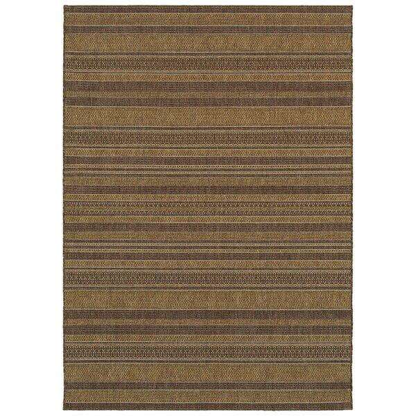 Salter Dark Brown Indoor/Outdoor Use Area Rug by B