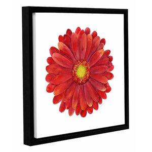 Red Gerbera Daisy Framed Painting Print by Latitude Run