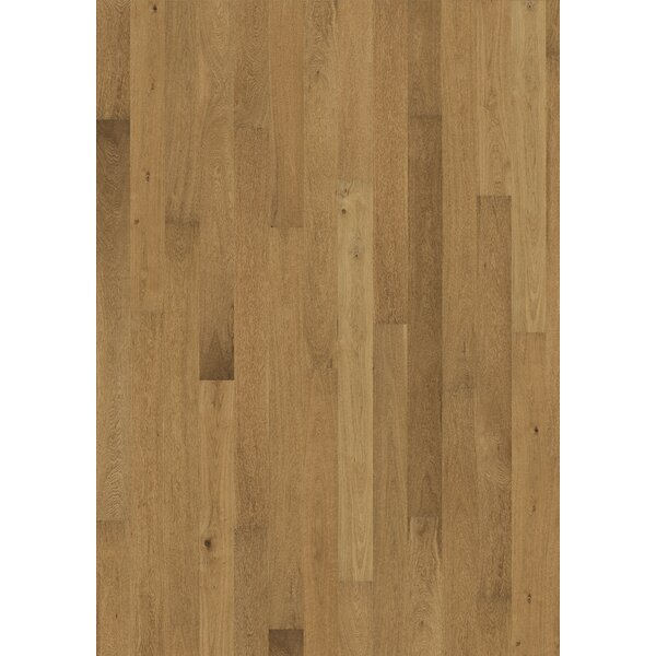Sonata 6-1/4 Engineered Oak Hardwood Flooring in Meno by Kahrs
