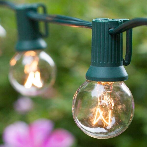 20-Light Globe String Lights by Wintergreen Lighting