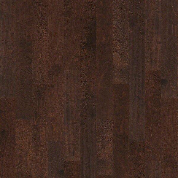 Whispering 5 Engineered Birch Hardwood Flooring in Dayton by Shaw Floors