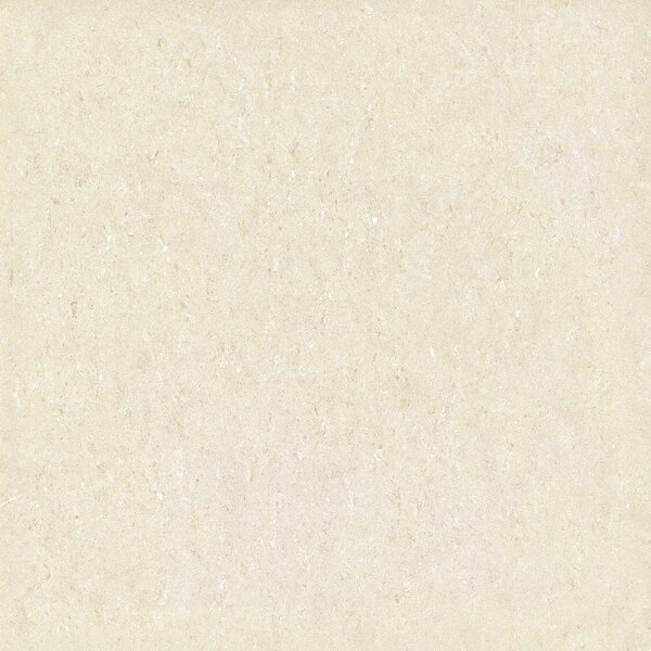 Galaxy Polished 24 x 24 Porcelain Field Tile in Beige by Multile