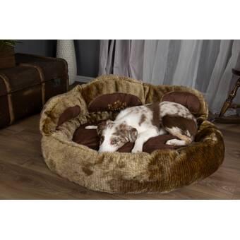 Mammoth Outdoor Memory Foam Donut Dog Bed Wayfair