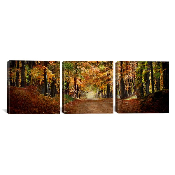 Horse Running Across Road in Fall 3 Piece Photographic Print on Wrapped Canvas Set by Loon Peak
