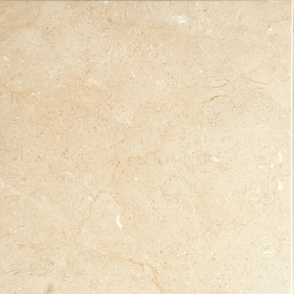 Marble 12 x 12 Field Tile in Crema Marfil Plus by Emser Tile