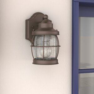 Treasa 1-Light Outdoor Wall Lantern