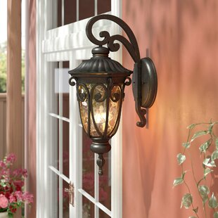 Erickson 3-Light Outdoor Wall Lantern By Astoria Grand