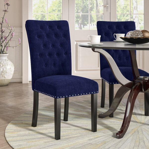 Erling Velvet Side Chair (Set of 2) by Willa Arlo Interiors